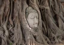 Ayutthaya8