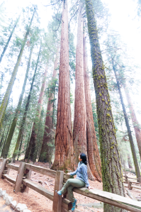Me posing with the trees